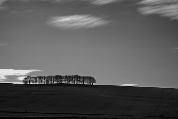 Wiltshire by foz