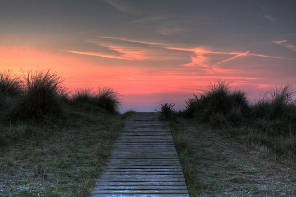 Sizewell Boardwalk by RichieL