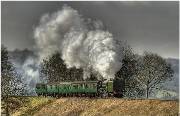 Full Steam Ahead by MossyOak