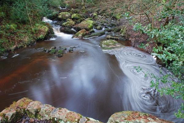 Woodland Pond by CheethamD