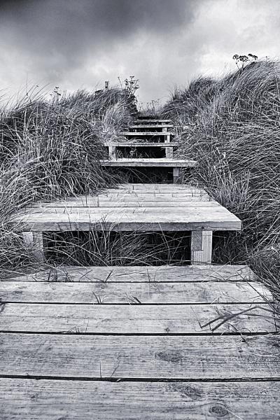 Steps at Dunnet , Scottish Highlands by simbastuff