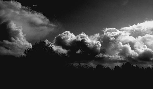 Silhouette Drama by SimonAlesbrook