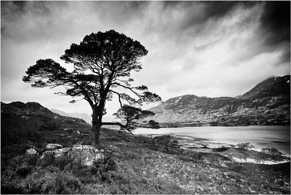 Loch Affric by Sue_R