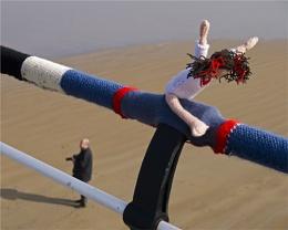 Wooly Gymnast
