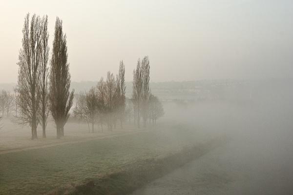 Calder Mist