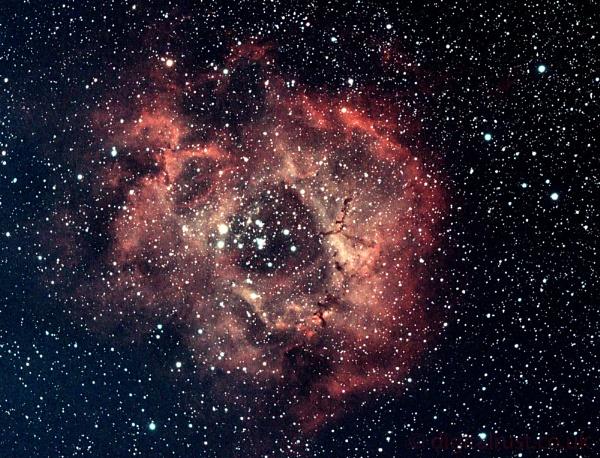 Rosette Nebula by chedd