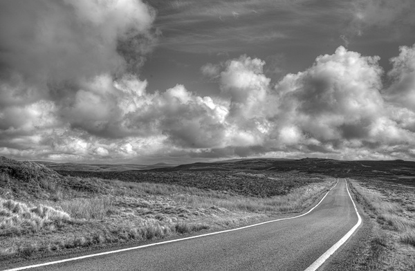 The Road ahed by wynn469