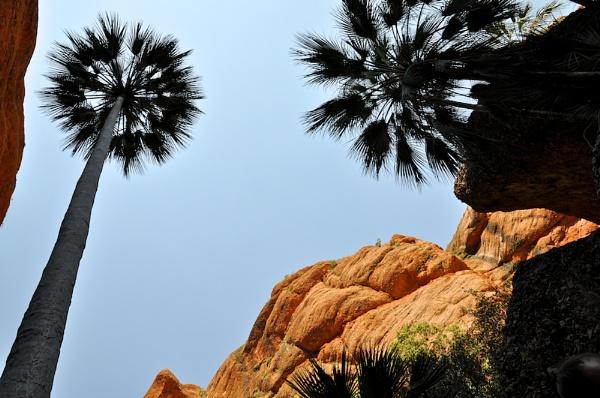 PURNULULU_MINI PALMS GORGE #4 by JN_CHATELAIN_PHOTOGRAPHY