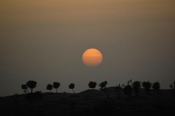 sun set in desert..... by madhudamodar