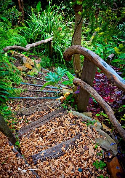 Secret Garden by SteveHarry