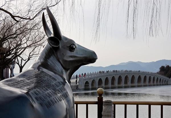 17 arch bridge from bronze ox\'s POV by xwang