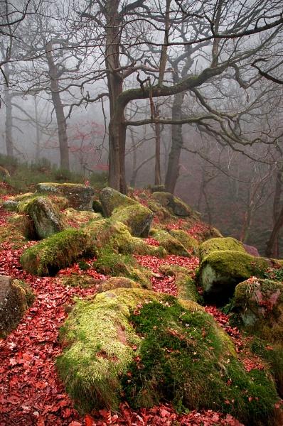 Padley Fog by Graham00