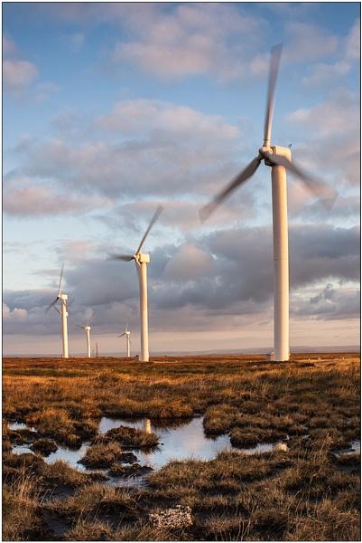 farming the wind by paulrankin