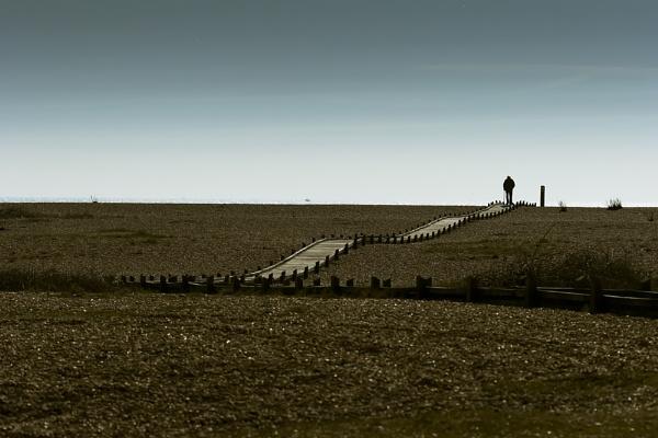 Lone Walker by meercat