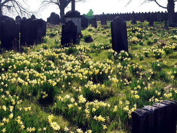 April morning at Egton Mortuary Chapel by erichoulder