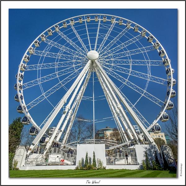 The Wheel by twelvemegs