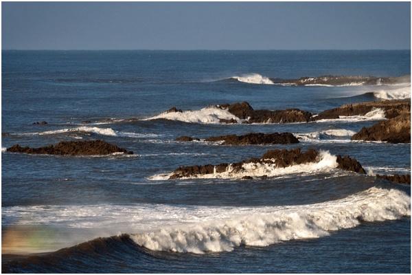 Surf\'s up II by marktc
