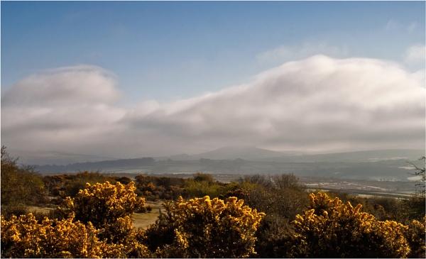 Wild Misty Moors by marktc