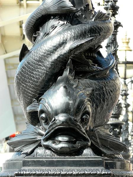 Fishy by ESSEXGAL