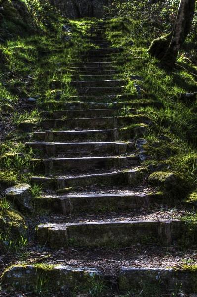 Quarry men\'s steps by stevew10000