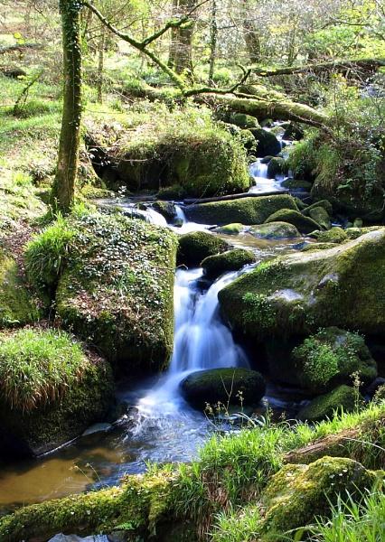 Kennall Vale River by carpmanstu