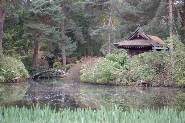 Japanese Garden, Tatton Park, Cheshire by photohog69