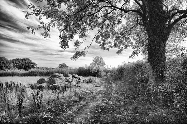 Countryside walk by edjbartos