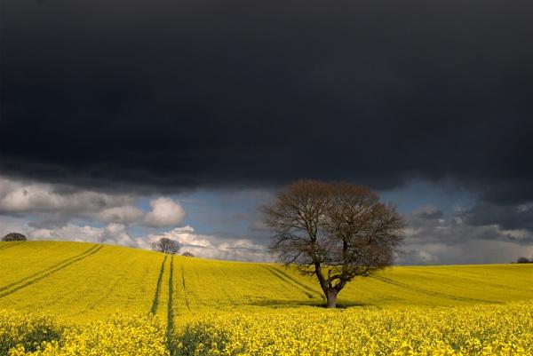 black sky by soulsharer