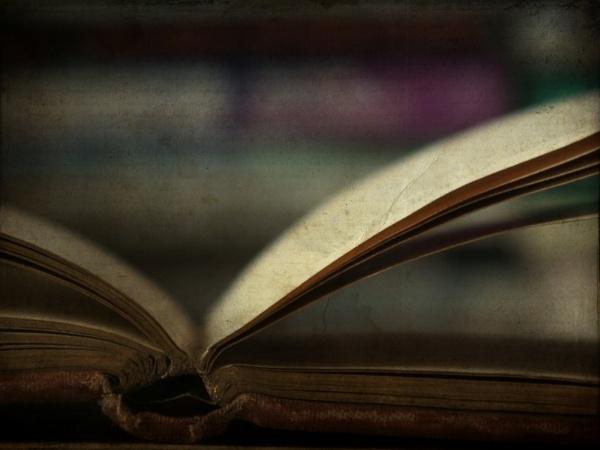 Open Book by ArtofOrdinary