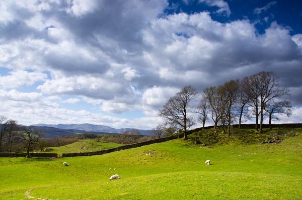 Cumbrian Hillside by DalesLass