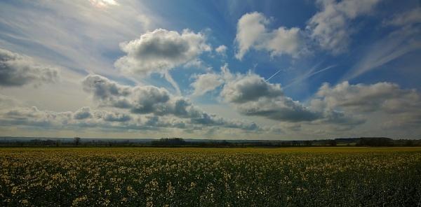 Field and Sky by jka59