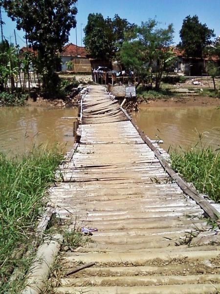 Bamboo Bridge by arhab
