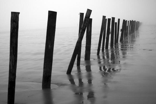 posts on beach by lez68