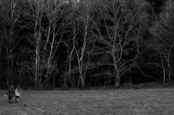 Warbleton. by BrendanBuesnel