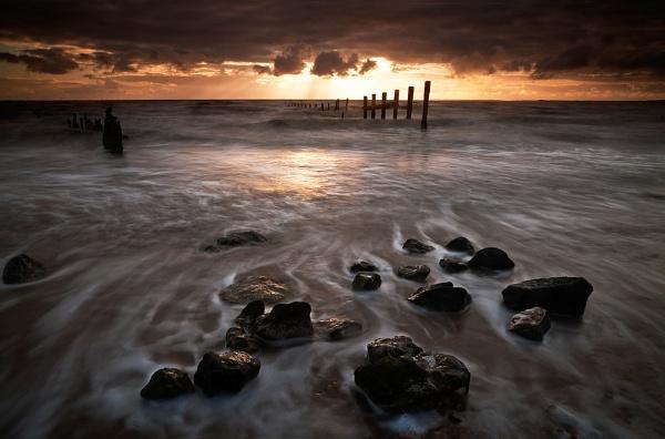 Shellness Surf by derekhansen