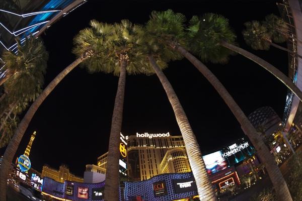Vegas by rontear