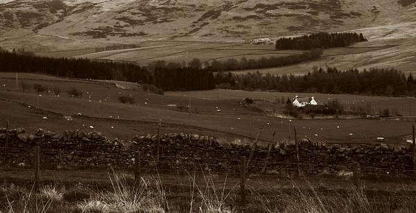 Rural by TeeCee