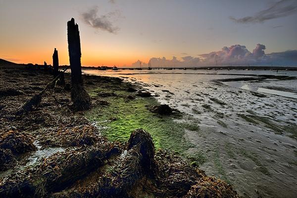 Hurst Estuary Groins by DaveShandley