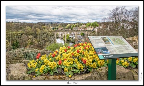 River Nidd by twelvemegs