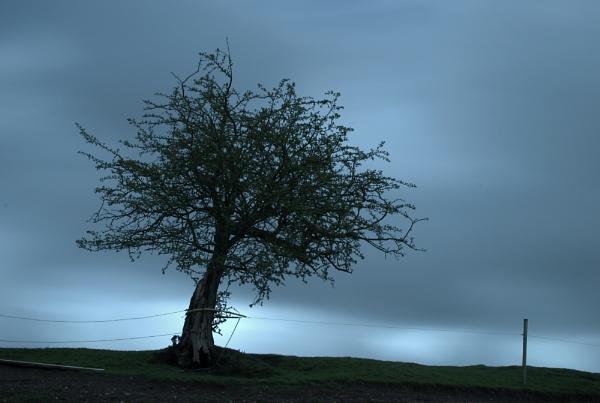 fear of the dark by soulsharer