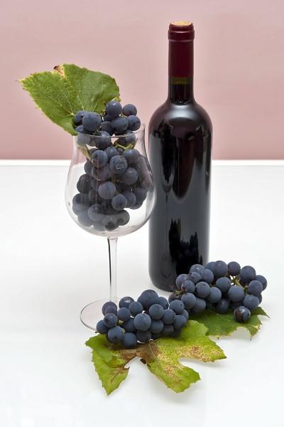 Vine & Grapes by Archangel72