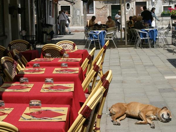 Venetian Hot Dog by Albright