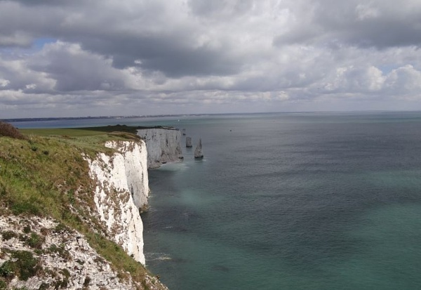 Old Harry by dazz1