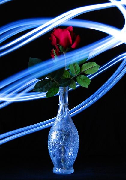 Swirling Lights by photohog69