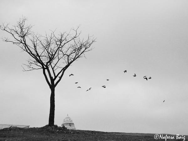 Alone by NafeesaBaig