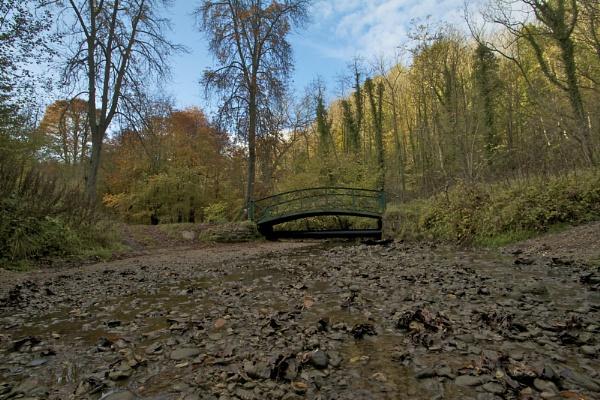 The Garden of Eden Bridge, Castle Eden Dene by DoctorChas