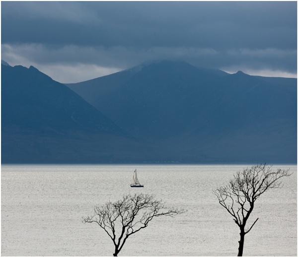 Running for harbour... by Scottishlandscapes