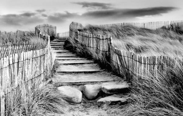 Sweeping Stairway by SandraKay