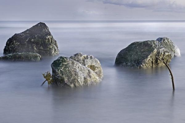Rocks in the Tide by jholmes