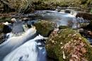 Swirls & Falls